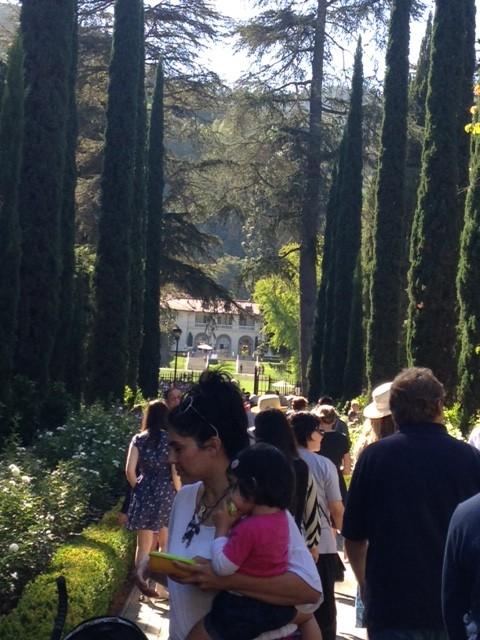 1beat spruce love garden